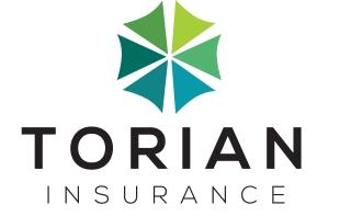 Torian Half Stacked Logo 2 - 2500 Silver Sponsor